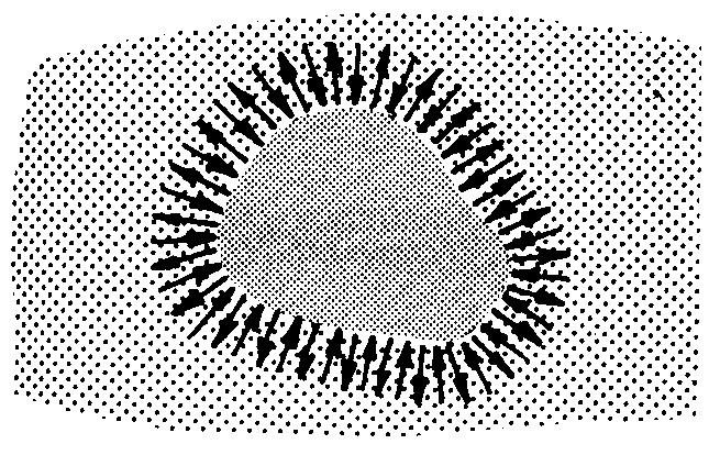 l-f-fig-02.jpg