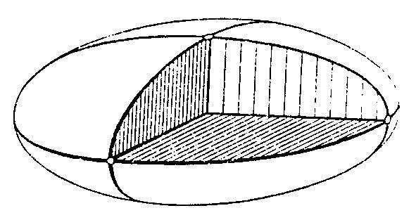 l-f-fig-13.jpg