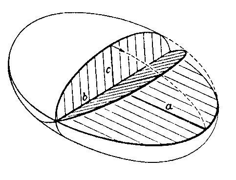 l-f-fig-14.jpg