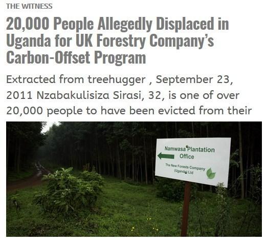 New Forests Company en Uganda1